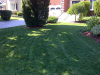 Saini landscaping CALL FOR A LAWN CUTTING NOW !!