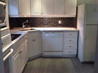 Backsplash Installations from $250