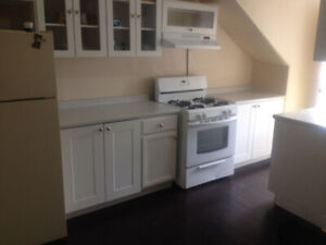 Newly Renovated 3 Bedroom Apartment With Large Backyard