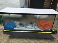 Fish tank (3 ft long) with accessories