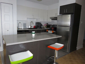Great Deal on Summer Sublet in Upscale 4.5 Downtown Doorman Bldg