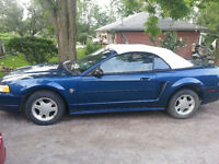 1999 Ford Mustang Convertible 6 cyl