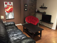 4 1/2 Downtown - Furnished, WIFI, Heated - Monthly Lease