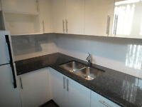 TOTALLY RENOVATE - ONE BEDROOM -CITY PARK
