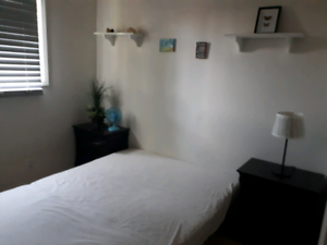 420 Friendly | 🏠 Find Local Room Rental & Roommates in