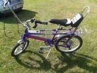 Two Raleigh chopper bikes