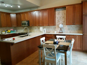 Kitchen cabinets and quartz