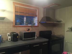 Renovated One Bedroom Basement Suite in Forrest Heights