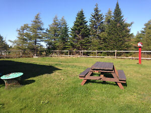 Cabin for Sale in Junction Park, Only 10 years old, 4 Bedrooms! St. John's Newfoundland image 3
