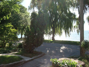 Beautifully renovated open concept Lakeside Long Branch Bachelor
