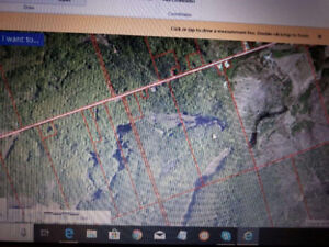 90 Acres on Barron Canyon Rd - Gateway to Algonquin Park!