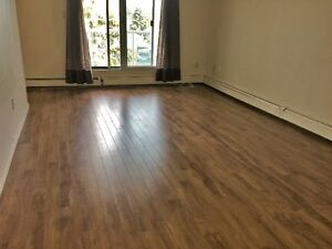 Renovated Millwoods 3 Bedroom Apartment