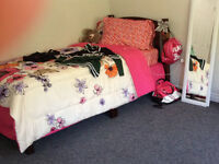 Twin Bed (frame, box spring, and mattress)