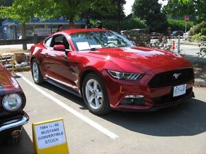 2015 Ford Mustang ecoboost Coupe (2 door)