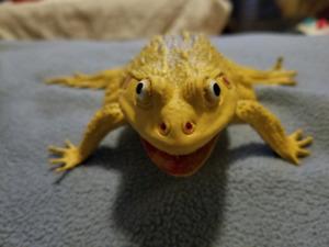 Jouet grenouille