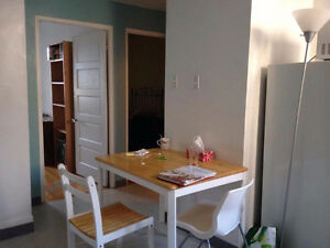 Summer Sublet Downtown!