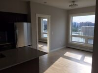 915 SQFT BRAND NEW 2 BDR CONDO DOWNTOWN