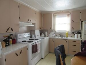 Duplex with great income potential Cornwall Ontario image 8