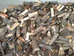 Firewood apple cherry maple and Ash