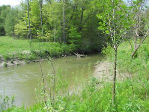 Campground Sale: 1.5 Km fr Lake Erie / Pt Burwell + 14 acres London Ontario image 4