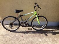 2x Adults bikes for sale