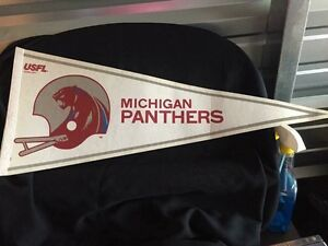 "30""L Michigan Panthers pennant"