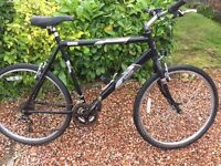 Raleigh Firefly gents bicycle