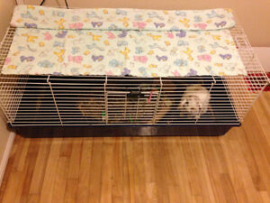 *Reduced price*, Large rabbit cage