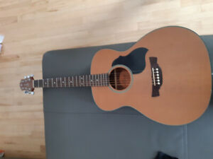 guitare acoustique crafter