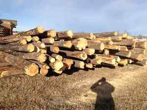 PINE FIREWOOD / LOG DECOR / LEGACY LOG HOMES INC.