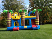 Bouncy Castle Birthday Party Rentals, Inflatables