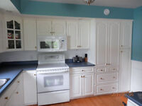 Kitchen Cabinets/Cupboards for sale