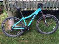 Specialized Woman's Mountain Bike