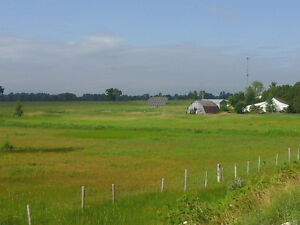 FARM, BARN AND SHOP FOR RENT