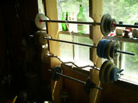 Excercise weights
