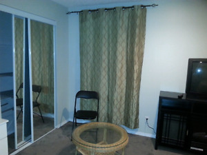Room in Northside fully furnished, female only! June free.