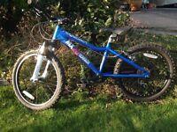Ridgeback MX20 Kids mountain bike