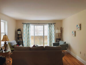 Roommate Wanted May 1, 2 Bdrm South End Townhouse-Like Apartment
