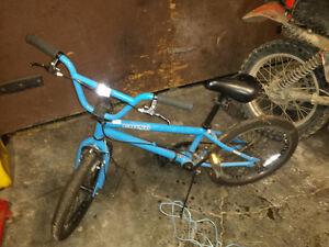 Blue Grind BMX - $250