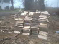 Looking for firewood logs