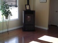 fireplace,pellet and wood burning stoves