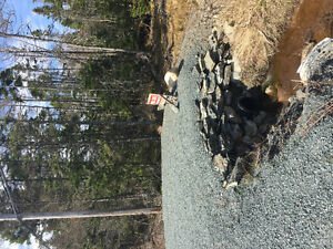 LAND FOR SALE - PORTERS LAKE - BUILDING/SEPTIC APPROVED!