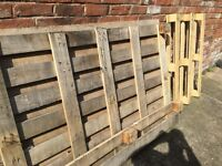 Wooden palettes /firewood