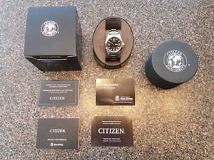 Mens Citizen Eco Drive Watch