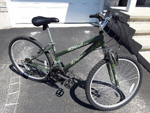 Lady's Bike (brand new)