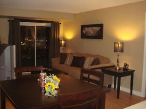 Furnished Two Bedroom Condo in Square One, Mississauga
