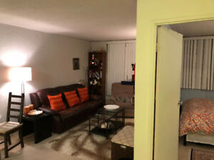 Fully Furnished 3 1/2 Apartment (Lacite Building)- Available Jan