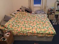 Large Double Room + Garden 8 minutes Walk to New Cross