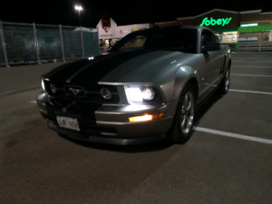 2008 Ford Mustang - V6 Premium w/Pony Package