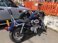 2005 Harley Davidson Sportster 883